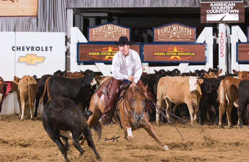 Coontail Cat, 2005 NCHA Non-Pro Derby Champion